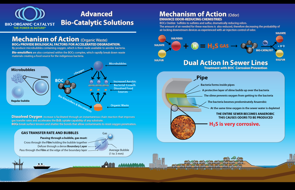 Advanced Bio-Catalytic Solutions