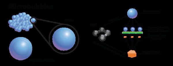 Bio-Organic Catalyst Microbubbles