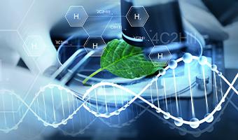 About Bio-Organic Catalyst
