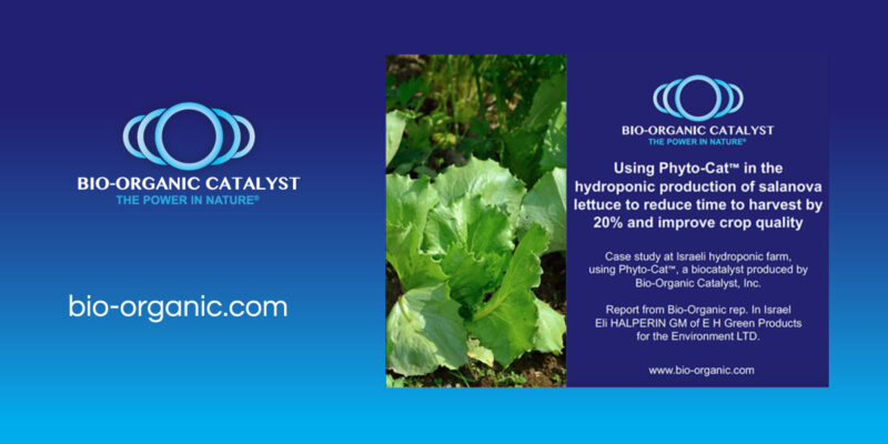 Reducing Lettuce Harvest Time By 20%.