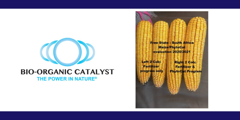 Evaluation Of Phyto-C3™ Maize 2020 -2021